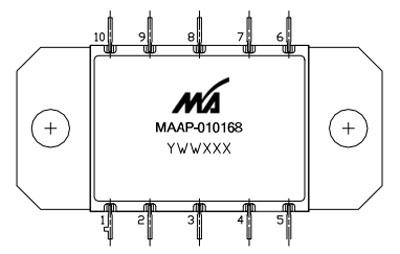 MAAP-010168
